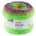 Néon Coton Katia 504