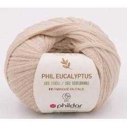 Coton Phildar Phil Eucalyptus Dune